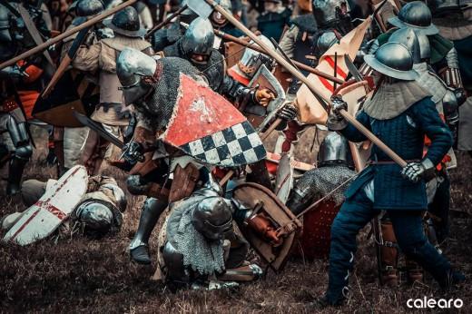 Battaglia di Castagnaro 2016